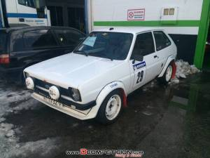 ford fiesta 1.3 rally